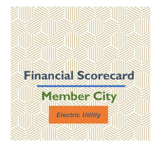 Financial Scorecard Cover (Sample)